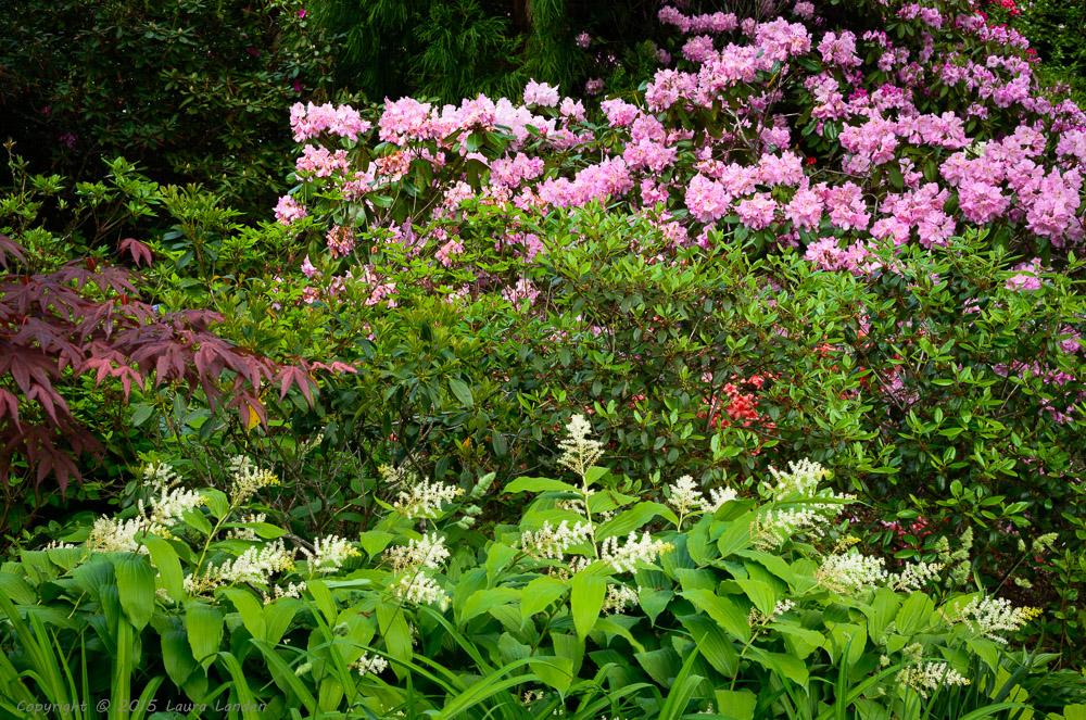 Gleaner Gardens
