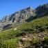 Table Mountain #1