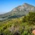 Table Mountain #2