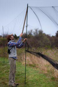 Raise Banding Nets